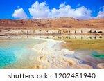 the evaporated salt has... | Shutterstock . vector #1202481940