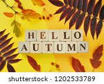 hello autumn greetings words on ... | Shutterstock . vector #1202533789