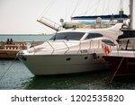odessa  south of ukraine  the...   Shutterstock . vector #1202535820