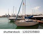odessa  south of ukraine  the...   Shutterstock . vector #1202535883