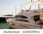 odessa  south of ukraine  the...   Shutterstock . vector #1202535913