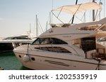 odessa  south of ukraine  the...   Shutterstock . vector #1202535919