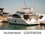 odessa  south of ukraine  the...   Shutterstock . vector #1202536246