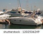 odessa  south of ukraine  the...   Shutterstock . vector #1202536249