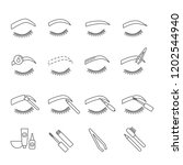 eyebrows shaping linear icons...   Shutterstock .eps vector #1202544940
