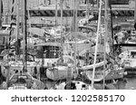 italy  sicily  mediterranean...   Shutterstock . vector #1202585170