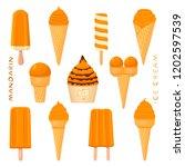 vector illustration for natural ... | Shutterstock .eps vector #1202597539