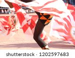 competitions of the flag wavers ... | Shutterstock . vector #1202597683
