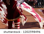 competitions of the flag wavers ... | Shutterstock . vector #1202598496