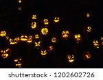 jack o lanterns lit in october...   Shutterstock . vector #1202602726