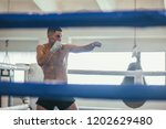 male boxer during boxing... | Shutterstock . vector #1202629480