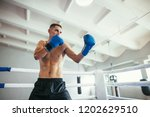 male boxer fighting in ring.... | Shutterstock . vector #1202629510