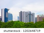 urban buildings with trees and... | Shutterstock . vector #1202648719