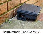 A Black Plastic Rat Trap. Pest...