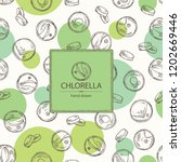 background with chlorella ... | Shutterstock .eps vector #1202669446