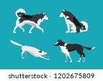 vector illustration. set of... | Shutterstock .eps vector #1202675809