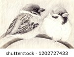 sparrows are little birds.... | Shutterstock . vector #1202727433