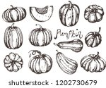 vector collection with doodle... | Shutterstock .eps vector #1202730679