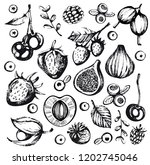 vector set with doodle berry | Shutterstock .eps vector #1202745046