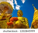 standing gold buddha in  alms... | Shutterstock . vector #1202845999