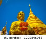 standing gold buddha in  alms... | Shutterstock . vector #1202846053