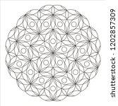 flower mandala. embroidery... | Shutterstock .eps vector #1202857309