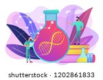 scientists in lab working with... | Shutterstock .eps vector #1202861833