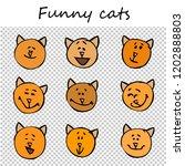 funny cats  kittens. doodle... | Shutterstock .eps vector #1202888803