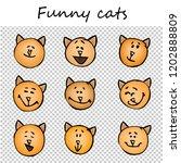 funny cats  kittens. doodle... | Shutterstock .eps vector #1202888809