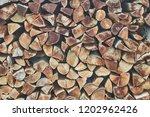 stack of firewood | Shutterstock . vector #1202962426