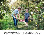 senior grandfather with... | Shutterstock . vector #1203022729