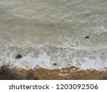 seaford chalk cliffs  | Shutterstock . vector #1203092506