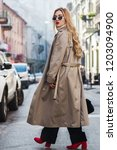 outdoor full body fashion... | Shutterstock . vector #1203094900