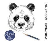 hand drawn sketch panda head... | Shutterstock .eps vector #1203136789