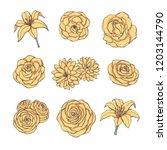 hand drawn vector set of yellow ... | Shutterstock .eps vector #1203144790