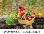 autumn composition with a soft... | Shutterstock . vector #1203180076