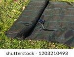 lay garden fleece | Shutterstock . vector #1203210493