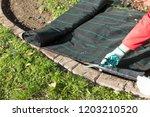lay garden fleece | Shutterstock . vector #1203210520