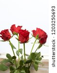 a bouquet of scarlet roses.... | Shutterstock . vector #1203250693