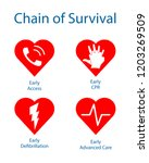 chain of survival. medical... | Shutterstock .eps vector #1203269509