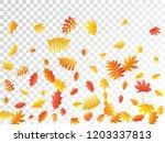 oak  maple  wild ash rowan... | Shutterstock .eps vector #1203337813