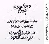 cool script font. brush painted ... | Shutterstock .eps vector #1203364276