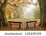 Two Benches In A Colorful...