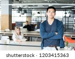 serious confident handsome...   Shutterstock . vector #1203415363