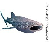 cartoon whale shark isolated on ... | Shutterstock . vector #1203445123