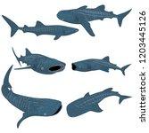 set of cartoon whale shark... | Shutterstock . vector #1203445126