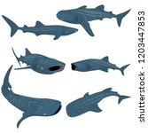 set of cartoon whale shark... | Shutterstock .eps vector #1203447853