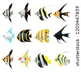 set of angel fish cartoon... | Shutterstock .eps vector #1203447859