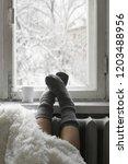cozy winter still life  woman... | Shutterstock . vector #1203488956