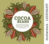 cacao beans plant  vector... | Shutterstock .eps vector #1203536359